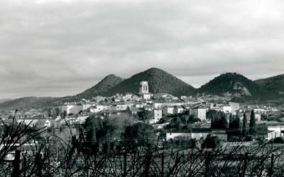 village wine3
