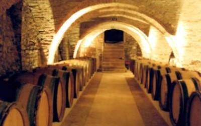village wine8