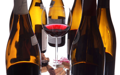 A Peek at the Promised Land, Review: Côte Chalonnaise Reds